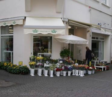 Lüdenscheid Wilhelmstraße 22